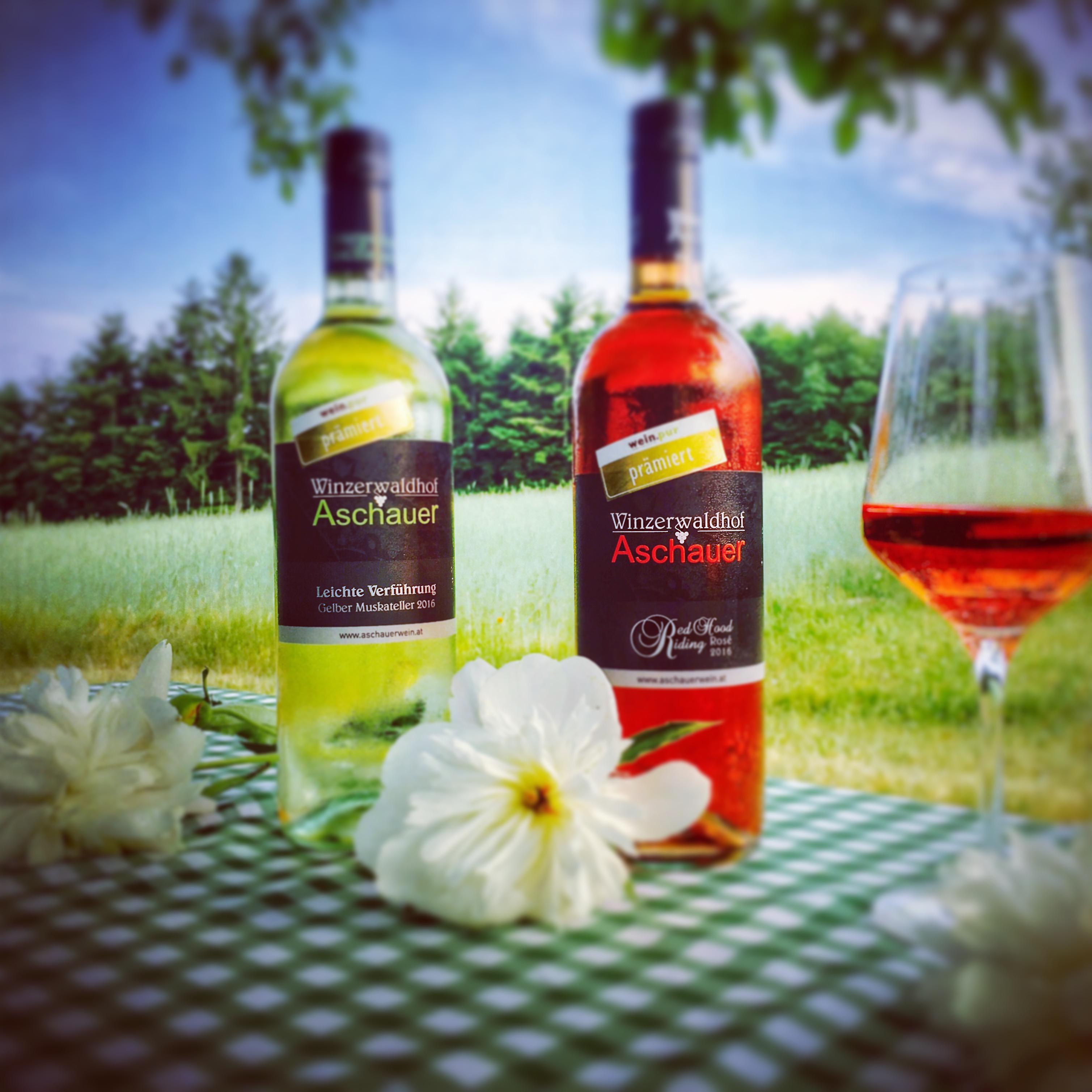 Wein pur – Picknick- & Sommerweine