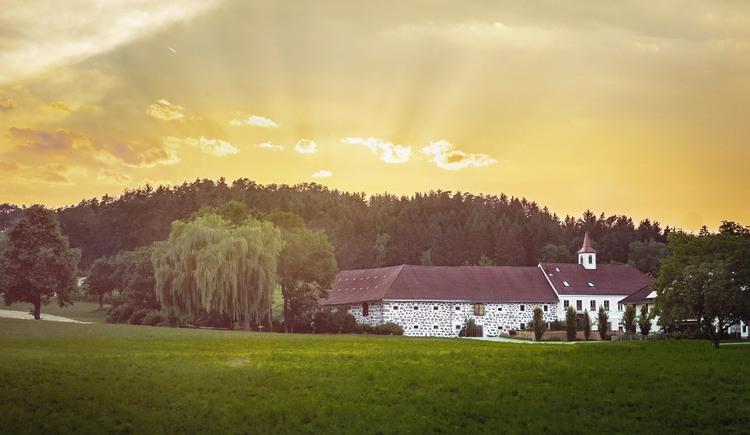 ABGESAGT Weinfest am Lester Hof